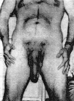 Джелкинг Крем 5 см