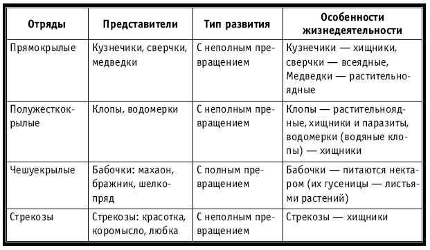 Начать заполнение таблицы с