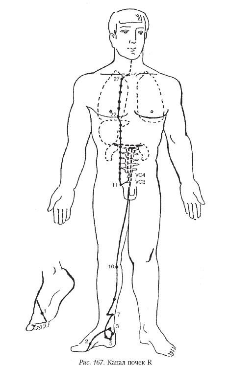 Холестаз печени симптомы лечение