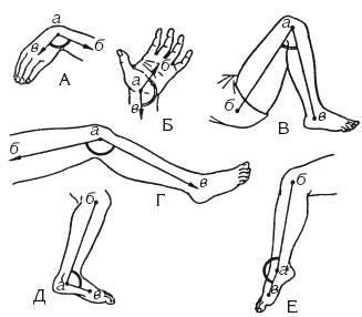 Изучение объема движений в суставах ванночки для суставов стопы