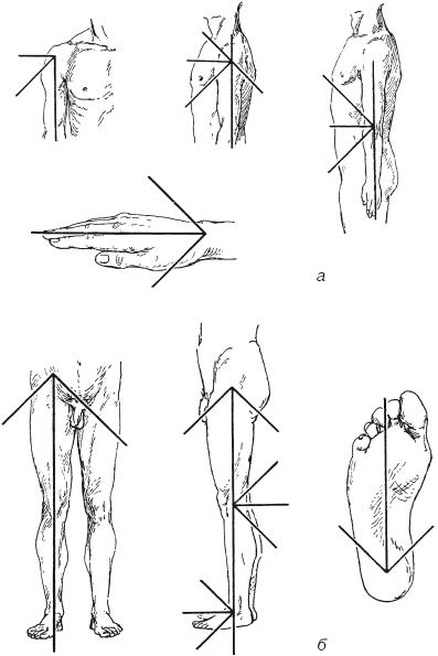 Угломер для определения подвижности суставов сколько стоит замена тазобедреного сустава в больнице имени боткина