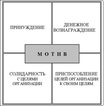 Основные виды деятельности