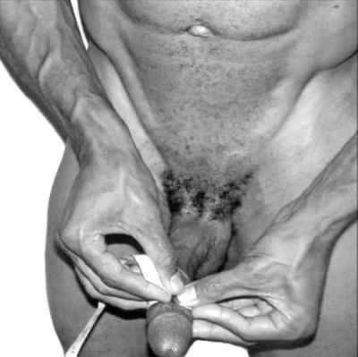 Как можно увеличить рост пениса