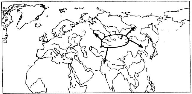 Алтайская колыбель