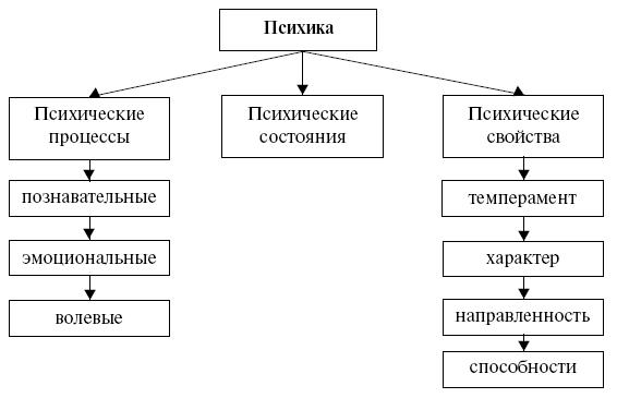 схема структура психики человека