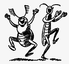 муравьиная сказка