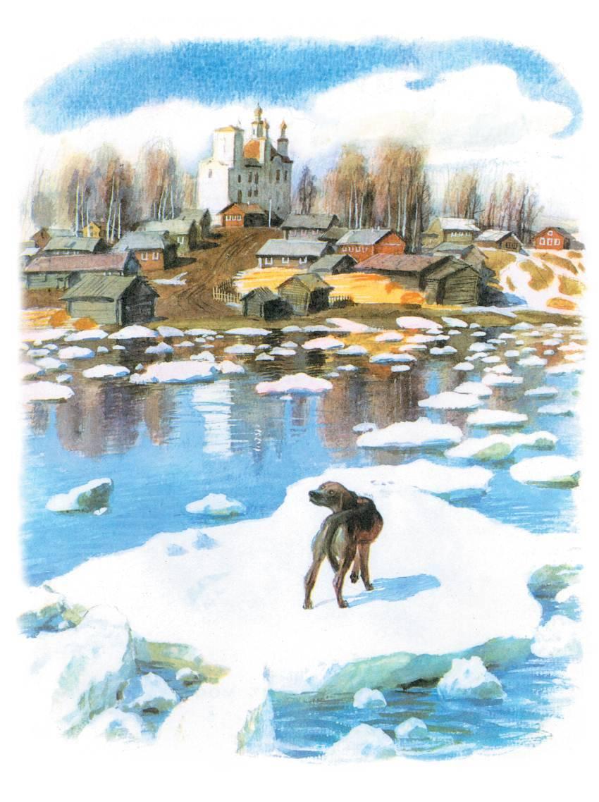 картинки арктура гончего пса городов